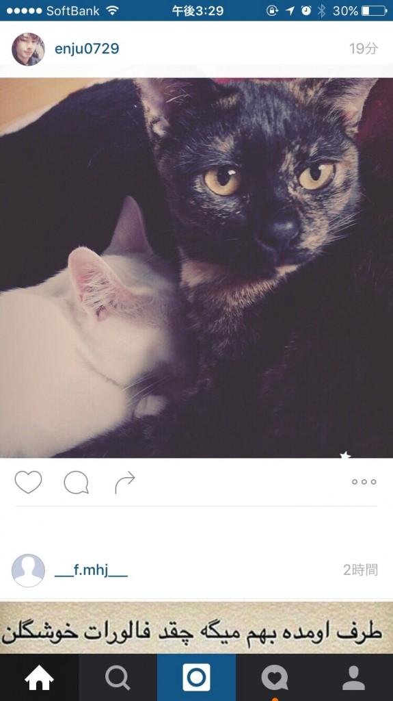 Instagramでみんなに写真を共有しよう